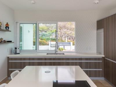 Coral Estate 230 - 230-kitchen-2-contemporary-design-villa-coral-estate-curacao